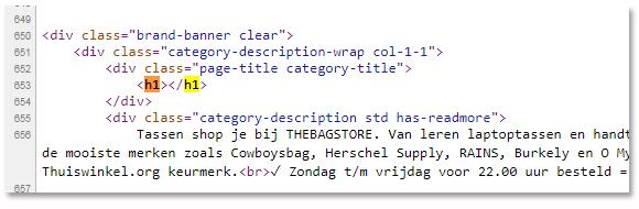 SEO-Friesland-H1-tag-leeg-webshop